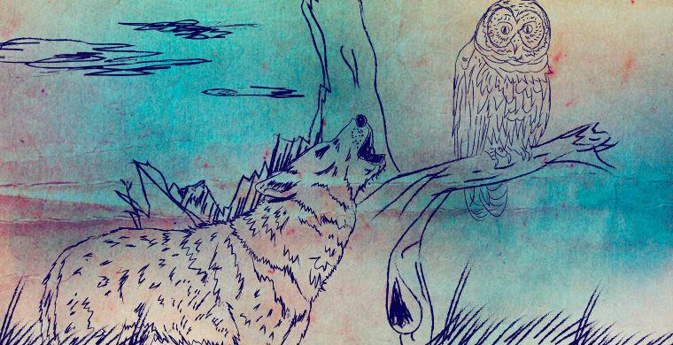 Сказка Индейцев Апачи: Волк и Сова